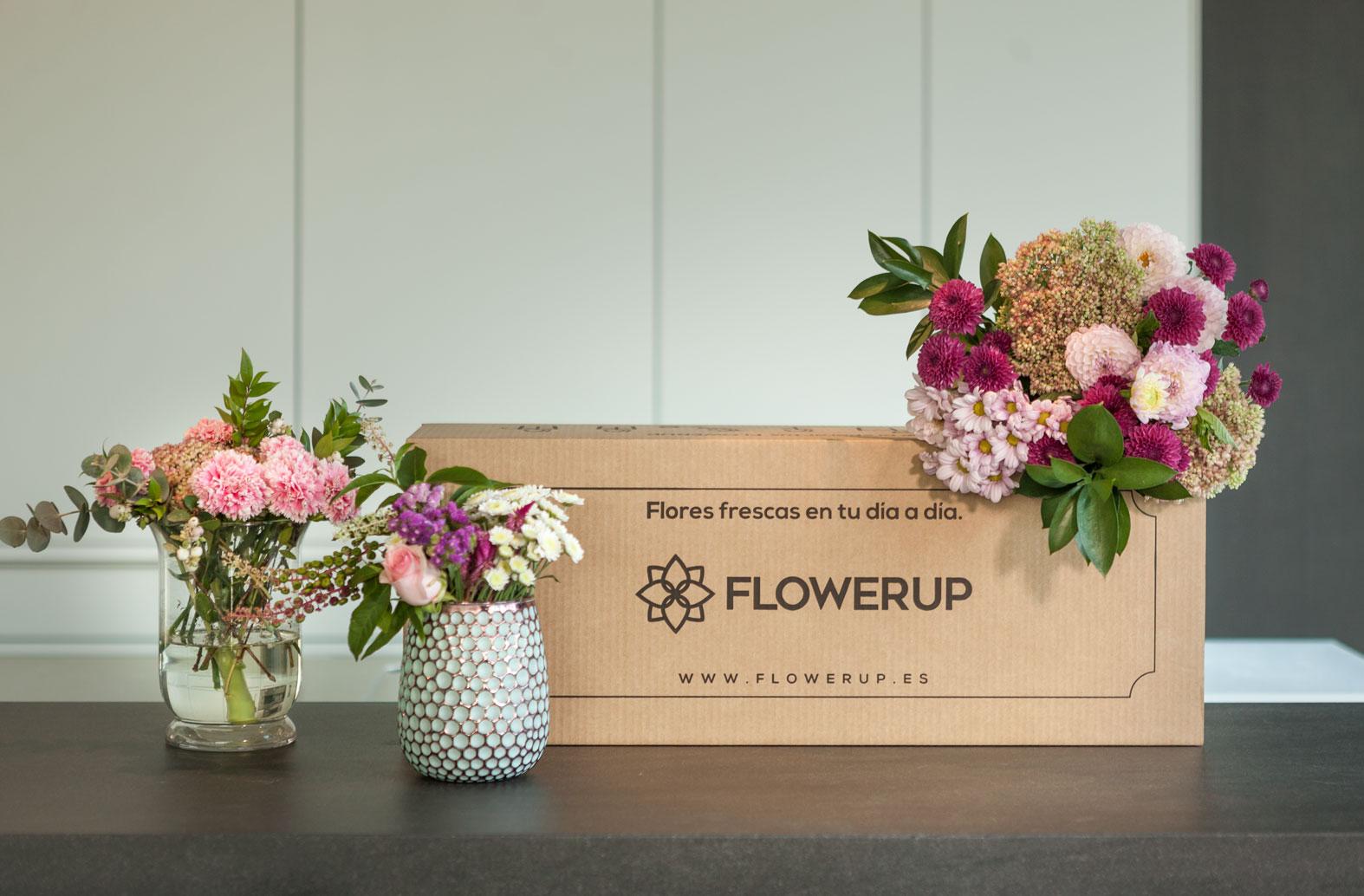 Flores frescas FLOWERUP